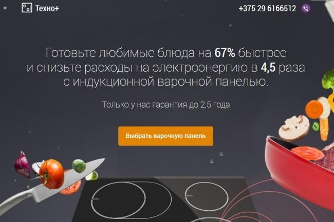 Копия Landing page с любой платформы. Лендинг, одностраничник под ключ 44 - kwork.ru