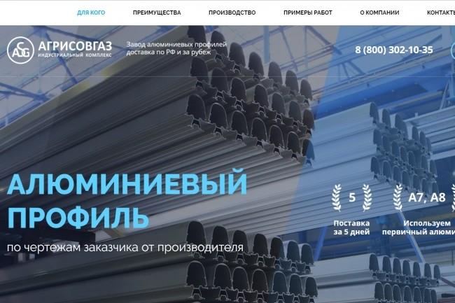 Копия Landing page с любой платформы. Лендинг, одностраничник под ключ 33 - kwork.ru