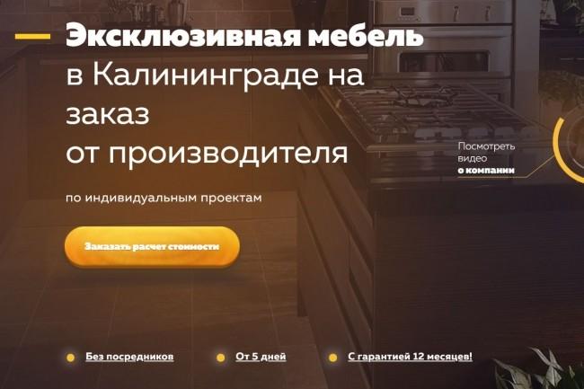 Копия Landing page с любой платформы. Лендинг, одностраничник под ключ 32 - kwork.ru