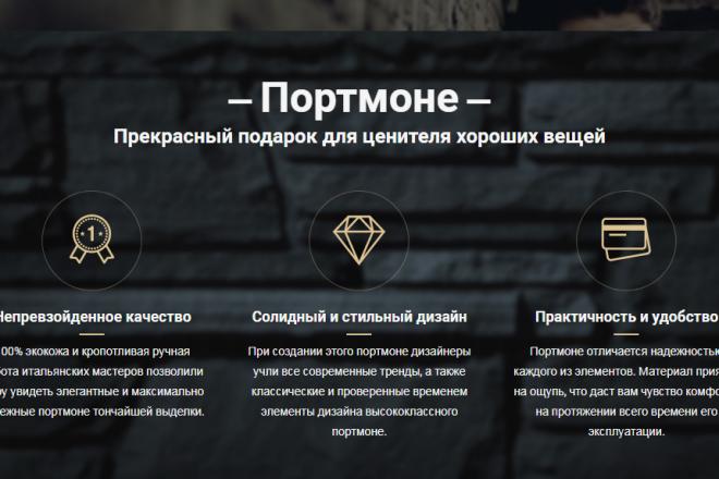 Качественная копия лендинга с установкой панели редактора 67 - kwork.ru