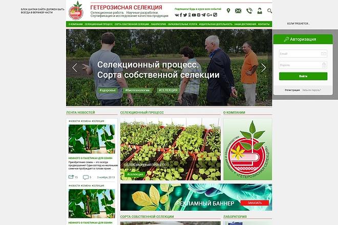 Уникальный и качественный дизайн сайта в PSD формате 3 - kwork.ru