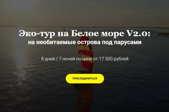 Копия Landing page с любой платформы. Лендинг, одностраничник под ключ 8 - kwork.ru