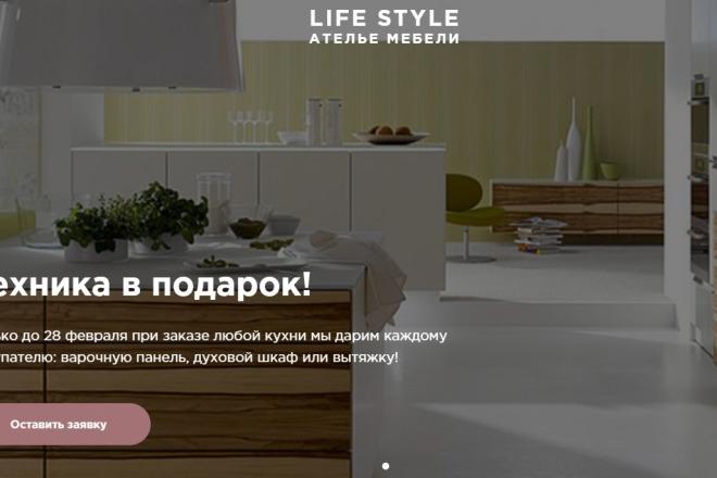 Копирование лендингов, настройка форм, корзины, правки, виджеты 8 - kwork.ru