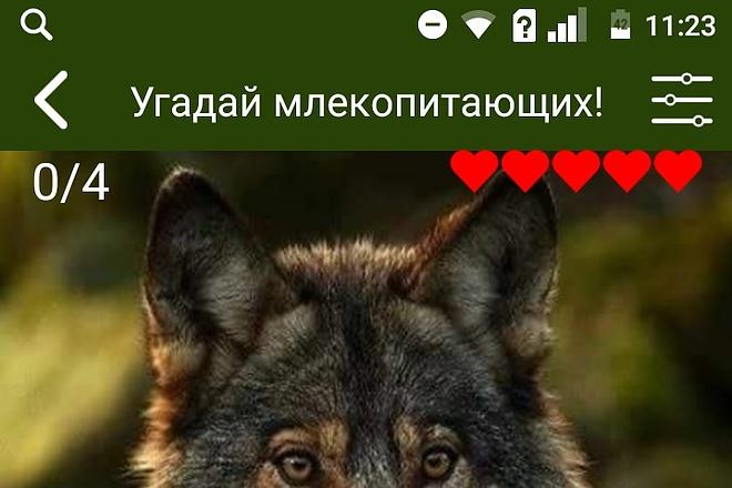 Создам android приложение 11 - kwork.ru
