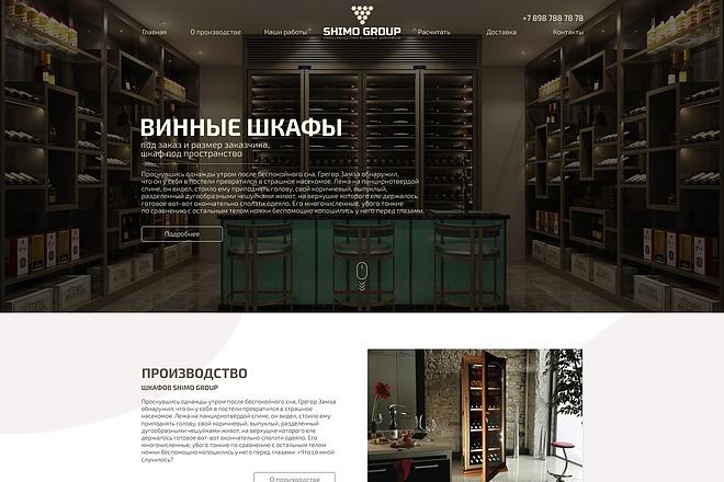 Уникальный дизайн главной страницы для вашего сайта 5 - kwork.ru
