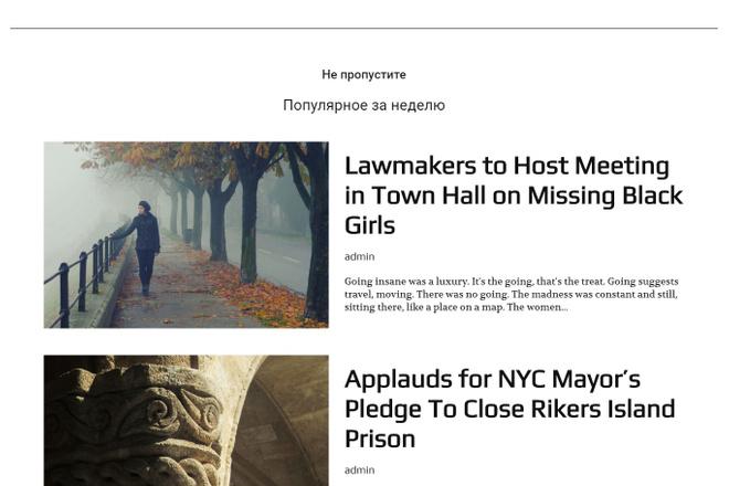 Создам красивый адаптивный блог, новостной сайт 13 - kwork.ru