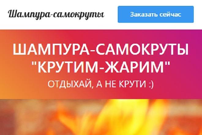 Делаю копии landing page 11 - kwork.ru