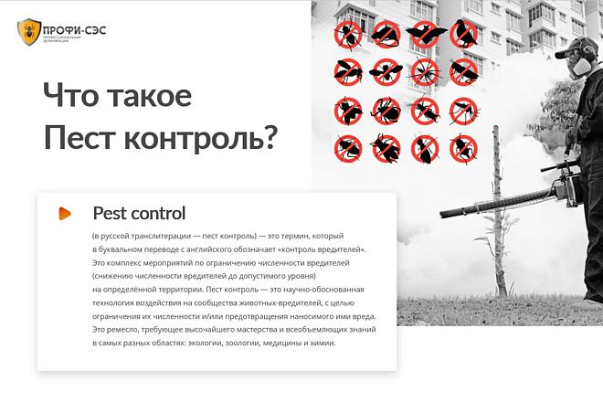 Презентация для бизнеса, грамотно, быстро 3 - kwork.ru