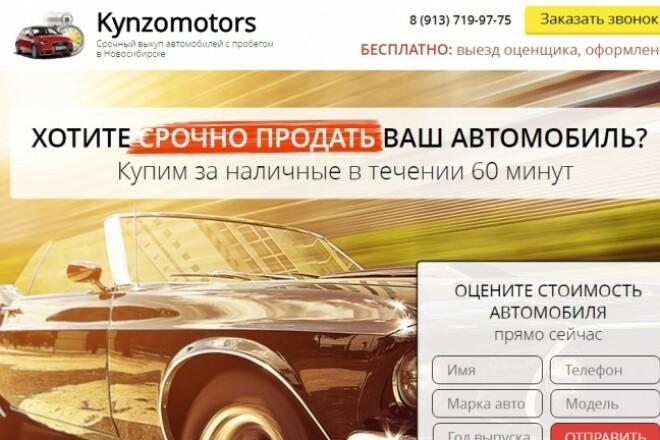 Качественная копия лендинга с установкой панели редактора 100 - kwork.ru