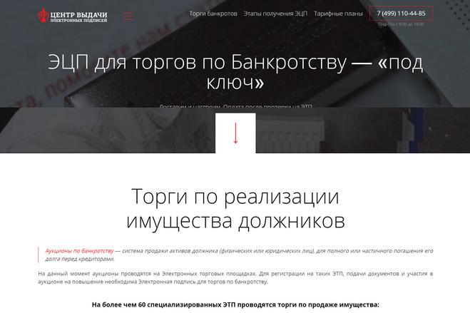 Точная копия лендинга + админ-панель 75 - kwork.ru