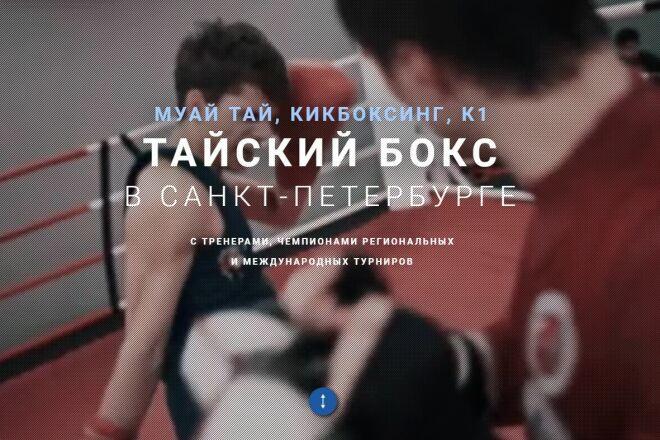 Скопировать Landing page, одностраничный сайт, посадочную страницу 64 - kwork.ru