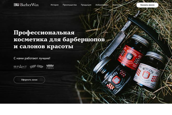 Лендинг на Tilda 3 - kwork.ru