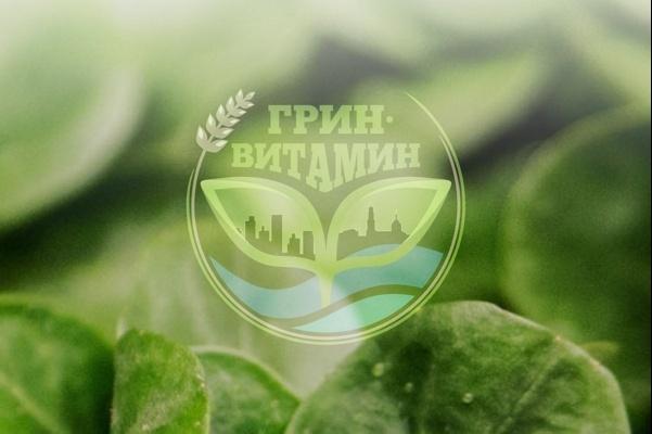 Логотип по вашему эскизу 52 - kwork.ru