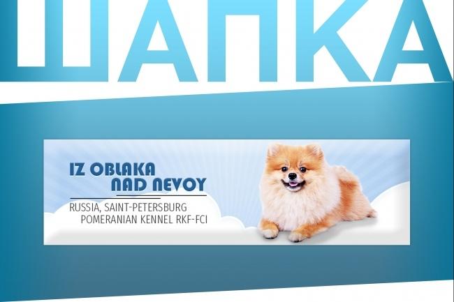 Создам уникальную графическую шапку для сайта 7 - kwork.ru