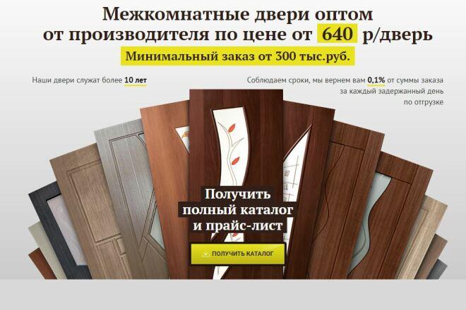 Скопировать Landing page, одностраничный сайт, посадочную страницу 80 - kwork.ru