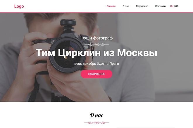 Сайт под ключ. Landing Page. Backend 119 - kwork.ru