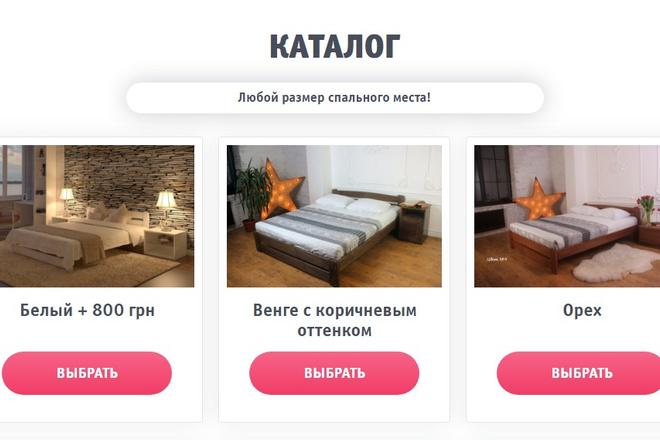 Качественная копия лендинга с установкой панели редактора 38 - kwork.ru
