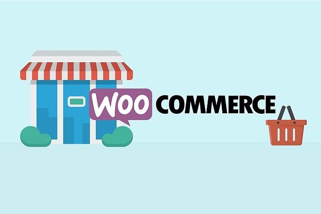 50 премиум тем WP для интернет-магазина на WooCommerce 5 - kwork.ru