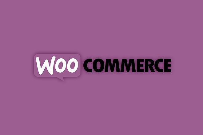 50 премиум тем WP для интернет-магазина на WooCommerce 4 - kwork.ru