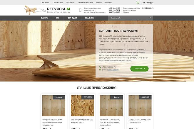 Дизайн страницы Landing Page - Профессионально 32 - kwork.ru