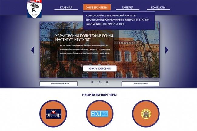Сделаю современный и вкусный дизайн сайта-визитки,блога 1 - kwork.ru