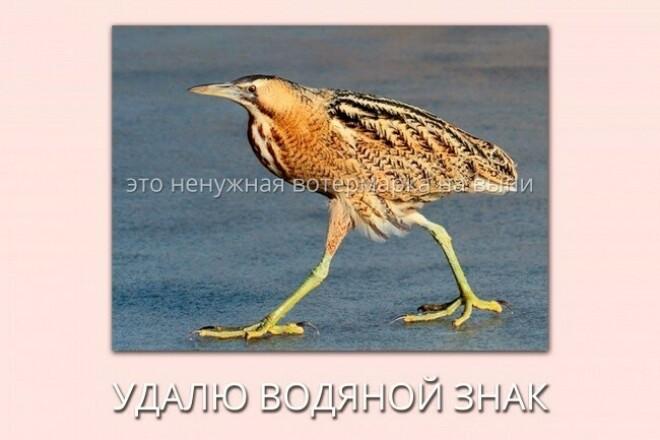 Удалю водяной знак с фото 1 - kwork.ru