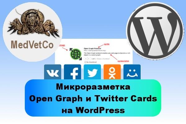 WordPress: микроразметка Open Graph для социальных сетей 1 - kwork.ru