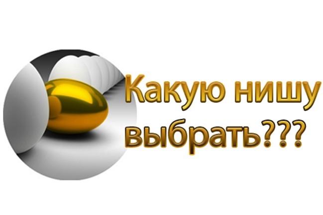 Как быстро выбрать прибыльную нишу для сайта? 1 - kwork.ru