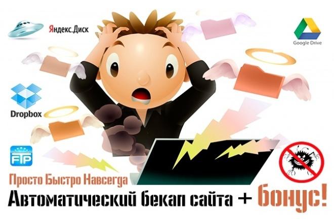 Автоматический бекап вашего сайта + бонус! 1 - kwork.ru
