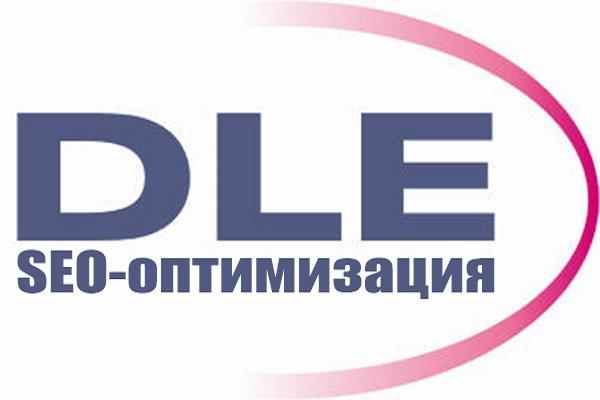 seo-оптимизирую сайт на DLE 1 - kwork.ru