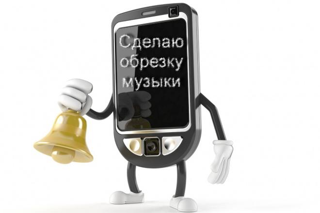 Сделаю обрезку музыки 1 - kwork.ru