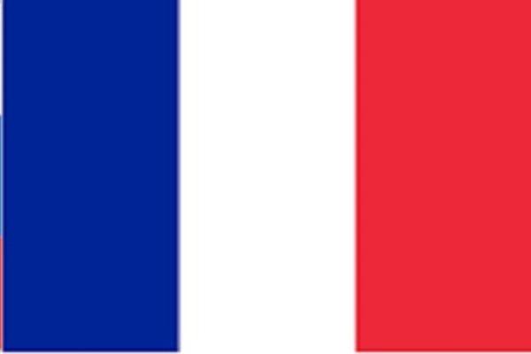 Переведу с французского на русский и наоборотПереводы<br>Могу перевести fr-ru и наоборот соответственно. Делать субтитры дороже так как надо проставлять таймкоды. Большого опыта за плечами нет, однако сам живу во Франции и я был бы рад переводить.<br>