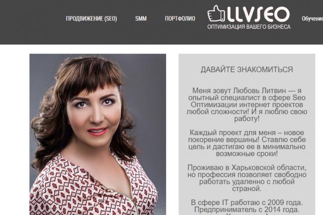 100 профильных ссылок на ваш сайт с сайтов не линкопомоек 1 - kwork.ru