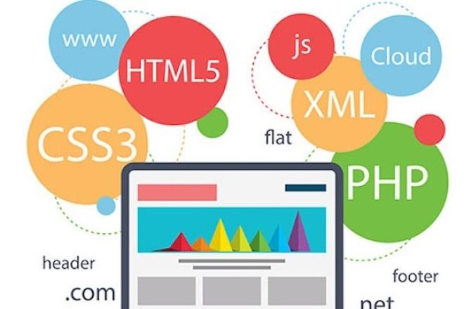 Напишу код на любом web-языке php, css, javascript, html, mysql, ajax 1 - kwork.ru