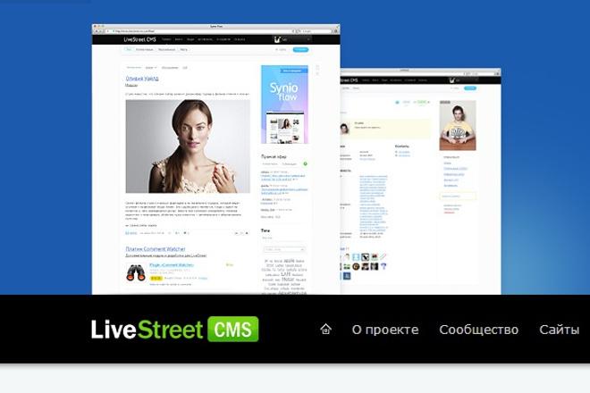 Создам сайт на LiveStreet 1 - kwork.ru