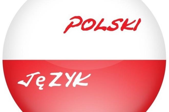 Перевод аудио/видеоматериалов с польского языка на русский 1 - kwork.ru