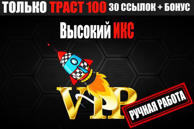 Vip пакет, 30 трастовых ссылок 100 + бонус 1 - kwork.ru