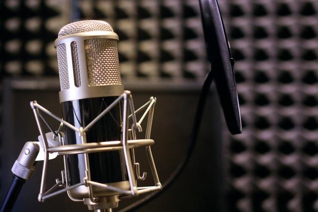 Озвучу ваш текстАудиозапись и озвучка<br>Качественно выполню озвучку вашего текста на профессиональный микрофон. Слушайте тест аудио в приложенном файле.<br>