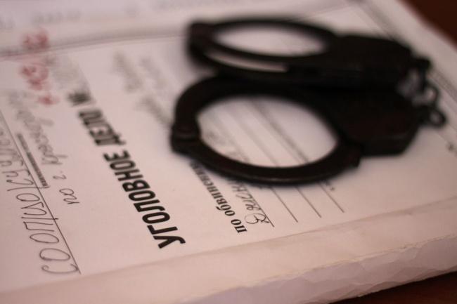 проконсультирую о перспективах уголовного дела 1 - kwork.ru