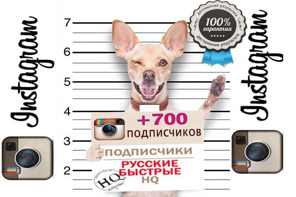 подписчики  Instagram 1 - kwork.ru
