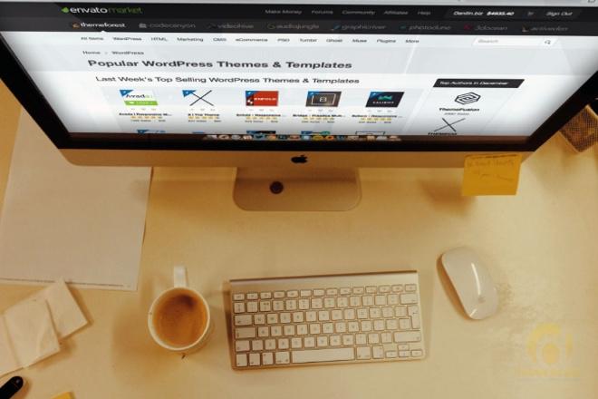 Разработка сайта на премиум шаблоне Wordpress 1 - kwork.ru