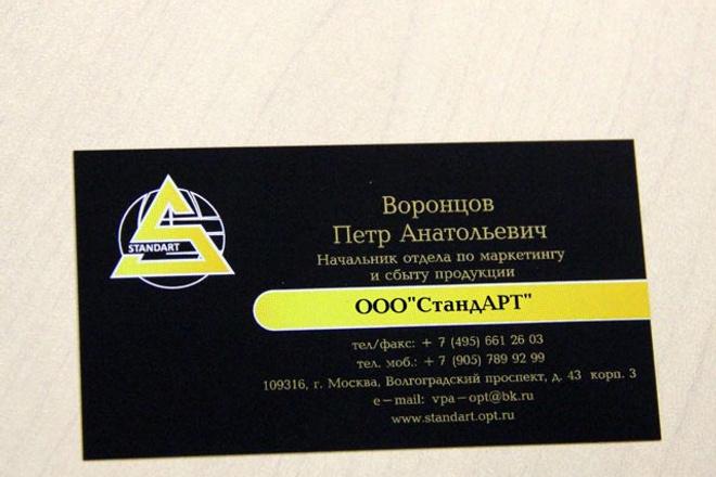Сделаю дизайн-макет визитки 1 - kwork.ru