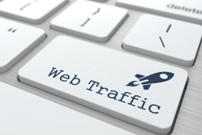 создам трафик из 25 000 человек на ваш сайт 1 - kwork.ru