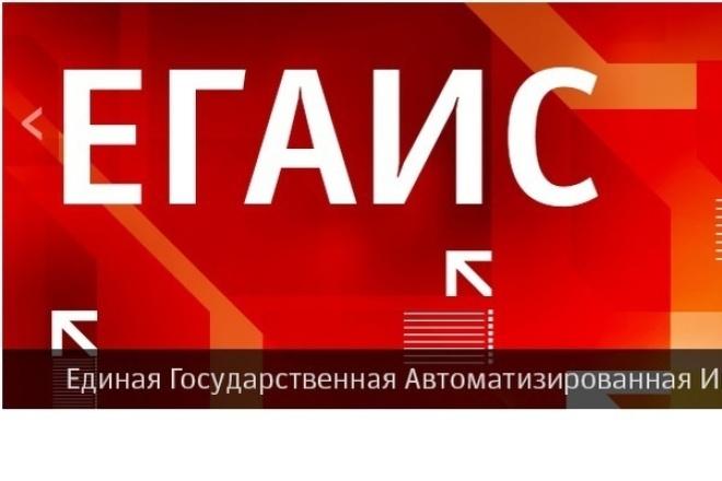 проконсультирую по настройке рабочего места для работы с ЕГАИС 1 - kwork.ru