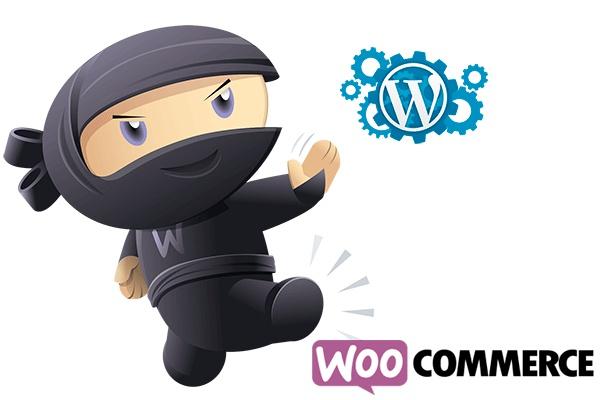 Доработка темы с woocommerce (магазин) 1 - kwork.ru