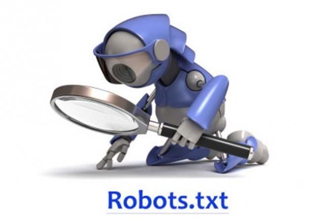 Создам правильные и индивидуальный robots.txt 1 - kwork.ru