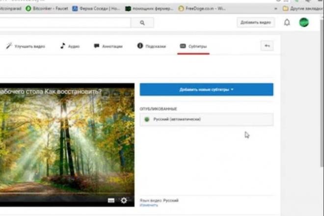 сделаю вам субтитры на видео 1 - kwork.ru
