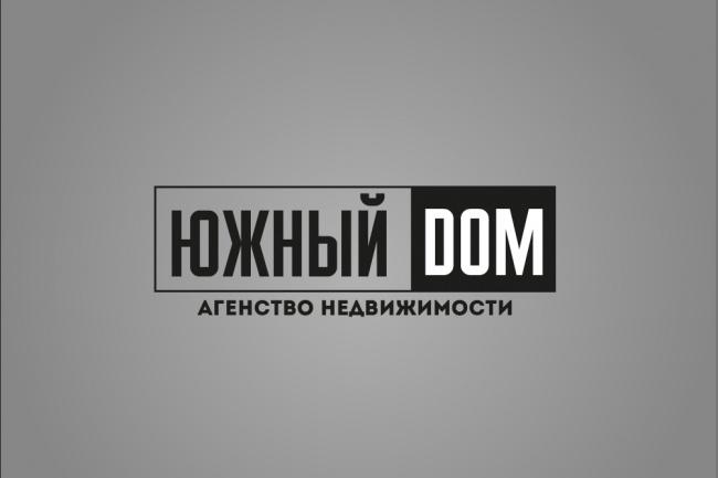 нарисую профессиональный логотип 1 - kwork.ru