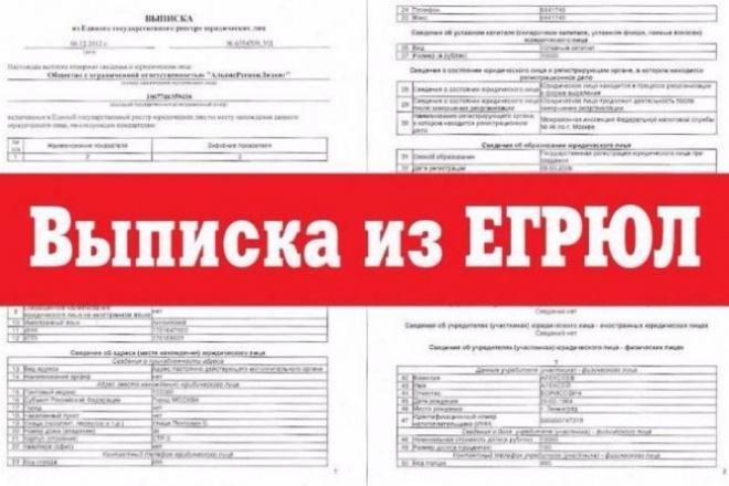 Выписка из егрюл 1 - kwork.ru
