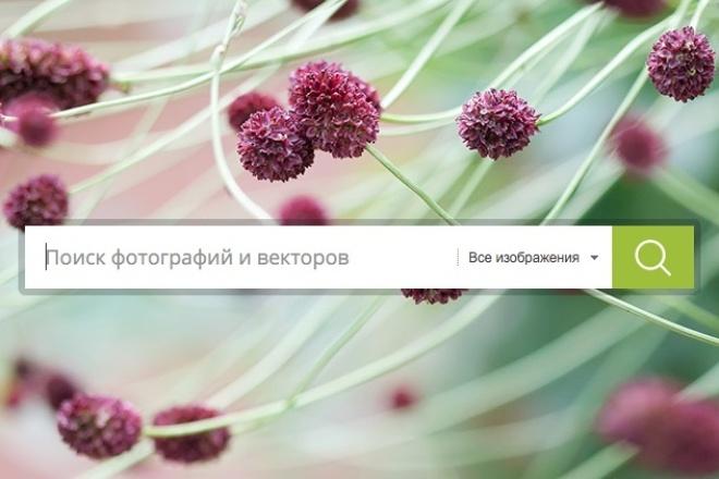 скачаю 5 фото хорошего качества 1 - kwork.ru